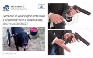 Dank, Memes, and News: 60 ABC7 News  bo  @abc7newsbayarea  DAY AREA  Someone in Washington state stole  a wheelchair from a disabled dog  a ьс7ne.ws/2bORwZ4  8/17/16, 9:20 PM I'm ready by PoiterKerton MORE MEMES