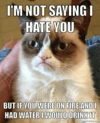 Fire, Grumpy Cat, and Ims: I'M NOT SAYING I  HATE YOU  BUT IF YOU WERE ON FIRE AND I  HAD WATERI WOULD DRINKIT Just saying you guys. wink emoticon