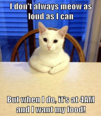 Happened this morning.  ^.^ Disney Memes: don't all VS ineoW as  loud as I can  But when I do, its at AIVI  and I want my food! Happened this morning.  ^.^ Disney Memes