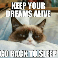 Disney Memes: KEEP YOUR  DREAMS ALIVE  GO BACK TO SLEEP Disney Memes