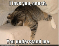 Disney, Love, and Meme: love you couch  You understand me.  TCANHASCHEEZEURGER.coM Disney Memes