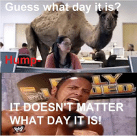 guess what day it is: Guess what day it is  ITDOESNTMATTER  WHAT DAY IT IS!