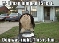 Dog: Mailman jumped 15 feet  Dog was right. This is fun.