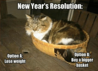 Cats, New Year's, and New Year's Resolutions: New Year's Resolution:  Option B:  Option A:  Buy a bigger  Lose weight  basket Join Pusheen the Cat !