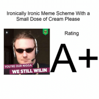 Aaaa nice: Ironically lronic Meme Scheme With a  Small Dose of Cream Please  Rating  YOU'RE OUR NIGGA  WE STILL WILIN Aaaa nice