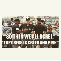 """After careful review . . . TheDress: 62  SO)THEN WEALL AGREE""""  FTHEDRESS IS GREEN AND PINK"""", After careful review . . . TheDress"""