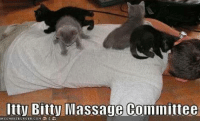 I need one of these when im out of work! frown emoticon grin emoticon: Itty Bitty Massage Committee I need one of these when im out of work! frown emoticon grin emoticon
