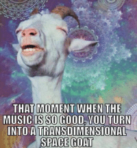 funny music: THAT MOMENT WHEN THE  MUSIC IS SO GOOD YOU TURN  INTO ATRANSDIMENSIONAL  SPACE GOAT