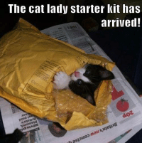 It has arrived! grin emoticon  Join Pusheen the Cat ;P: The cat lady starter kit has  arrived!  doz It has arrived! grin emoticon  Join Pusheen the Cat ;P