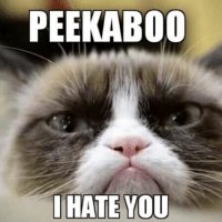 wink emoticon hehe: PEEKABOO  I HATE YOU wink emoticon hehe