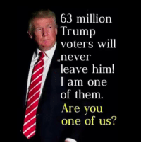 Stand with President Donald J. Trump!: 63 million  Trump  voters will  never  leave him!  I am one  of them.  Are you  one of us? Stand with President Donald J. Trump!