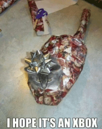 Animals, Anime, and Cats: I HOPE ITS AN XBOX This has to be the most patience cat in the world. grin emoticon Join Animal Memes. smile emoticon