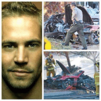 Scene of the accident, Paul Walker was the passenger in the vehicle.: Scene of the accident, Paul Walker was the passenger in the vehicle.