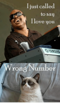 Wrong # wink emoticon Join Disney Memes smile emoticon: I just called  to say  I love you  Wrong Number Wrong # wink emoticon Join Disney Memes smile emoticon