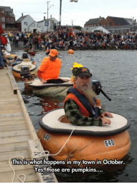 Pumpkin, Boat, and Yes: 640  This is what happens in my town in October.  Yes,those are pumpkins.... <p>Pumpkin Boat Racing.</p>