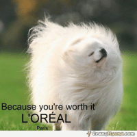 worth it: Because you're worth  It  L'OREAL  Paris
