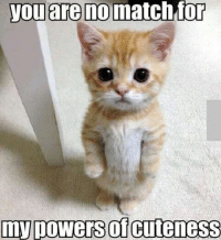 Join Animal Memes. smile emoticon: you are no match for  my powers CuteneSS Join Animal Memes. smile emoticon