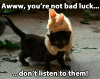 Join Animal Memes. smile emoticon: Awww, you're not bad luck...  don't listen to them! Join Animal Memes. smile emoticon