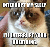 Yes!!! wink emoticon  Join Animal Memes. smile emoticon: INTERRUPT MY SLEEP  ILL INTERRUPT YOUR  BREATHING Yes!!! wink emoticon  Join Animal Memes. smile emoticon