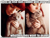 grin emoticon Join Animal Memes. smile emoticon: cataddictsanony-mouse  else fails cuddle with Tour Cat  whether they want to ornot  www.facebook.com/cataddicts grin emoticon Join Animal Memes. smile emoticon
