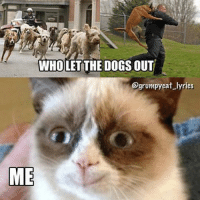 Cats, Dogs, and Who Let the Dogs Out: WHOLET THE DOGS OUT  @grumpy cat lyrics  ME who let the dogs out? grin emoticon ME! Join Grumpy Cat. smile emoticon