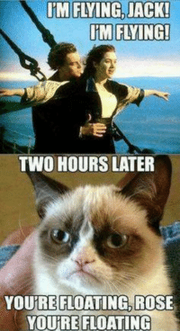 Cats, Grumpy Cat, and Rose: IM FLYING, JACK!  IM FLYING!  TWO HOURS LATER  YOURE FLOATING ROSE  YOURE FLOATING You're floating Rose smile emoticon   Grumpy Cat.