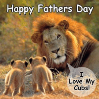 Happy Fathers Day Meme: Happy Fathers Day  Love My  Cubs!
