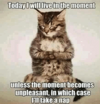 Grumpy Cat, Live, and Today: Today I Will live inthe moment  unlesS the moment becomes  unpleasant, in Which case  take a nap