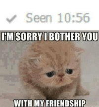 Sorry… frown emoticon  Animal Memes.: Seen 10:56  IM SORRY I BOTHER YOU  WITH MY FRIENDSHIP Sorry… frown emoticon  Animal Memes.