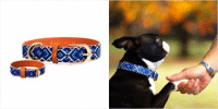 Funny, Omg, and Friendship: omg it's friendship bracelets for the only friendship I trust