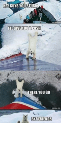 Animal Memes. smile emoticon: HEY GUYS YOU STUCK  ILL GIVE OUA PUSH  THERE YOU GO  BYE FRIENDS Animal Memes. smile emoticon