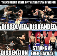 Facts, Wrestling, and World Wrestling Entertainment: THE CURRENTSTATE OF THE TAGTEAMDIVISION  WRESTLING  DISSOLVEDDISBANDED  STRONG AS  DISSENTION EVERBAYBAYI COLD HARD FACTS!