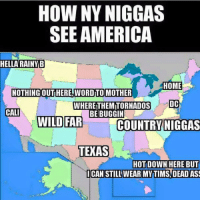 HOW MY NIGGAS SEE AMERICA: HOW MY NIGGAS SEE AMERICA   HELLA RAINY B  NOTHING OUT HERE, WORD TO MOTHER  HOME  DC  CALI  WILD FAR  WHERE THEM TORNADOS BE BUGGIN  COUNTRY NIGGAS  TEXAS  HOT DOWN HERE BUT I CAN STILL WEAR MY TIMS, DEAD ASS HOW MY NIGGAS SEE AMERICA