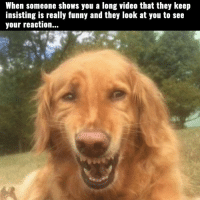 SO True..: When someone shows you a long video that they keep  insisting is really funny and they look at you to see  your reaction... SO True..