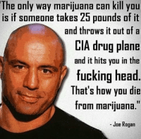 "The only way marijuana can kill you  is if someone takes 25 pounds of it  and throws it out of a  CIA drug plane  and it hits you in the  fucking head  That's how you die  from marijuana.""  Joe Rogan Truth:"