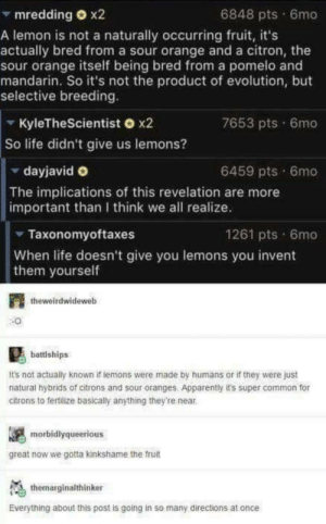 KINKSHAME THE LEMONS!!!!!!: 6848 pts 6mo  mredding O x2  A lemon is not a naturally occurring fruit, it's  actually bred from a sour orange and a citron, the  sour orange itself being bred from a pomelo and  mandarin. So it's not the product of evolution, but  selective breeding.  7653 pts 6mo  KyleTheScientist o x2  So life didn't give us lemons?  6459 pts 6mo  dayjavid O  The implications of this revelation are more  important than I think we all realize.  1261 pts 6mo  Taxonomyoftaxes  When life doesn't give you lemons you invent  them yourself  theweirdwideweb  battiships  It's not actually known if temons were made by humans or if they were just  natural hybrids of citrons and sour oranges, Apparently it's super common for  citrons to tertilize basicaly anything they're near  morbidlyqueerious  great now we gotta kinkshame the fruit  themarginalthinker  Everything about this post is going in so many directions at once KINKSHAME THE LEMONS!!!!!!