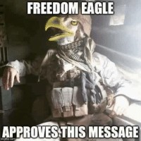 25 Best Freedom Meme Memes Eagle Memes Intensifies Memes The best freedom memes found across the internet and on social media. 25 best freedom meme memes eagle