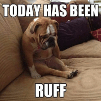 I could really use some cheering up today, so post your best memes below & the first one to make me laugh wins the Internet!: TODAY HAS BEEN  RUFF I could really use some cheering up today, so post your best memes below & the first one to make me laugh wins the Internet!