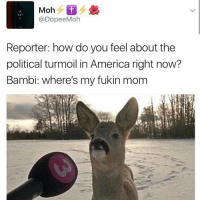 America, Bambi, and Mom: 69  @DopeeMoh  Reporter: how do you feel about the  political turmoil in America right now?  Bambi: where's my fukin mom