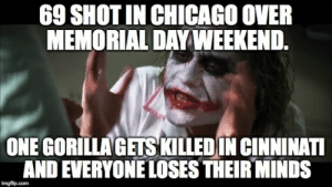 shot in Chicago over Memorial Day Weekend - Meme Guy: 69 SHOT IN CHICAGO OVER  MEMORIAL DAY WEEKEND  ONE GORİLLAGESKILLED İN CINNINATI  AND EVERYONE LOSES THEIR MINDS shot in Chicago over Memorial Day Weekend - Meme Guy