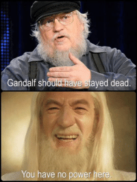 Game of Thrones Memes: Gandalf should have stayed dead  You have no power here Game of Thrones Memes