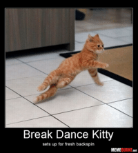 Dance: Break Dance Kitty  sets up for fresh backspin  MEME  OUAKE  net