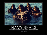 navy seal: NAVY SEALS  AND YOU THOUGHT THAT THESHARK WAS THE DEADLIEST PREDATOR  IN THE OCEAN