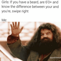 Girls: If you have a beard, are 60+ and  know the difference between your and  you're, swipe right  Me  Gagodzillathick @godzillathick always bringing the lols