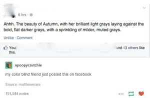 Facebook, Bold, and Brilliant: 6hrs .  Ahhh. The beauty of Autumn, with her brilliant light grays laying against the  bold, flat darker grays, with a sprinkling of milder, muted grays.  Unlike Comment  6 You  nd 13 others like  this  spoopycrutchie  my color blind friend just posted this on facebook  Source: matthewmara  151,044 notes The beauty of autumn