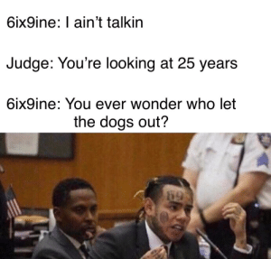 Not sure if anyone beat me to this: 6ix9ine: I ain't talkin  Judge: You're looking at 25 years  6ix9ine: You ever wonder who let  the dogs out?  69 Not sure if anyone beat me to this