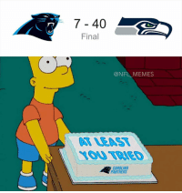 Good job, good effort!: 7 40  Final  @NFL MEMES  CAROLINA  PANTHERS Good job, good effort!