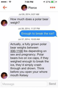 Memes, Sex, and Bear: 7:59 PM  1 57% D  Pierce  Jul 26, 2014, 9:27 AM  How much does a polar bear  weigh?  Jul 26, 2014, 11:37 PM  Enough to break the ice?  Jul 27, 2014, 12:03 AM  Actually, a fully grown polar  bear weighs between  330-1100 lbs depending on  sex and pregnancy. Polar  bears live on ice caps, if they  weighed enough to break the  ice, they'd simply crash  through and drown. Think  e before you open your whore  mouth Kelsey  Send  Message Well that escalated quickly...