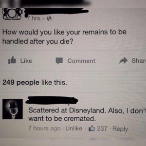 Dank, Disneyland, and Meme: 7 hrs .  How would you like your remains to be  handled after you die?  Like Comment  Shar  249 people like this.  Scattered at Disneyland. Also, I don't  want to be cremated  7 hours ago Unlike 237 Reply Is this a meme? by cleevethagreat MORE MEMES
