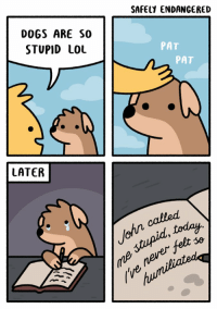 this shit crushed me: DOGS ARE SO  STUPID LOL  LATER  SAFELY ENDANGERED  PAT  PAT  today.  stupid felt this shit crushed me